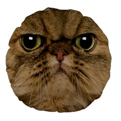 Cute Persian Cat Face In Closeup Large 18  Premium Flano Round Cushions by Amaryn4rt