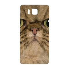 Cute Persian Cat Face In Closeup Samsung Galaxy Alpha Hardshell Back Case by Amaryn4rt