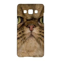 Cute Persian Cat Face In Closeup Samsung Galaxy A5 Hardshell Case  by Amaryn4rt