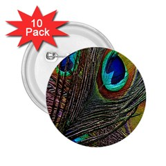 Peacock Feathers 2 25  Buttons (10 Pack)  by Simbadda
