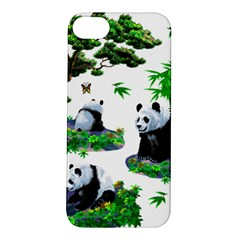 Cute Panda Cartoon Apple Iphone 5s/ Se Hardshell Case by Simbadda