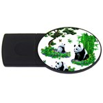 Cute Panda Cartoon USB Flash Drive Oval (2 GB) Front