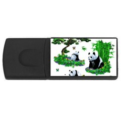 Cute Panda Cartoon Usb Flash Drive Rectangular (4 Gb) by Simbadda