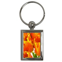 Mosaic Glass Colorful Color Key Chains (rectangle)  by Simbadda