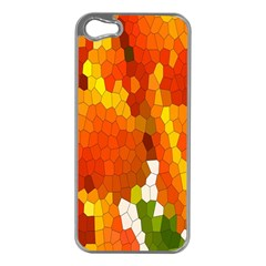 Mosaic Glass Colorful Color Apple Iphone 5 Case (silver) by Simbadda