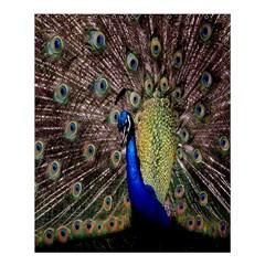 Multi Colored Peacock Shower Curtain 60  X 72  (medium)  by Simbadda