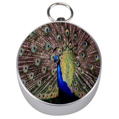 Multi Colored Peacock Silver Compasses by Simbadda
