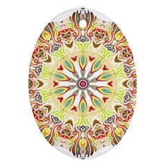 Intricate Flower Star Oval Ornament (two Sides) by Alisyart