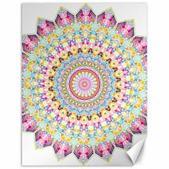 Kaleidoscope Star Love Flower Color Rainbow Canvas 12  X 16   by Alisyart