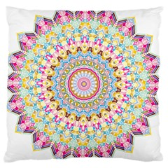 Kaleidoscope Star Love Flower Color Rainbow Large Cushion Case (two Sides) by Alisyart