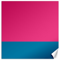 Flag Color Pink Blue Canvas 16  X 16   by Alisyart