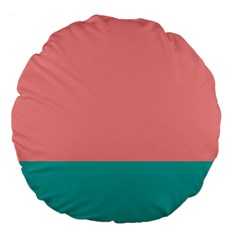 Flag Color Pink Blue Line Large 18  Premium Flano Round Cushions by Alisyart