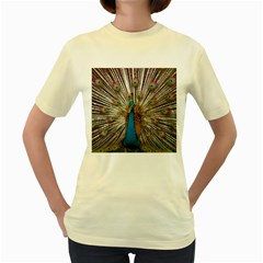 Indian Peacock Plumage Women s Yellow T Shirt by Simbadda
