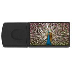Indian Peacock Plumage Usb Flash Drive Rectangular (4 Gb) by Simbadda