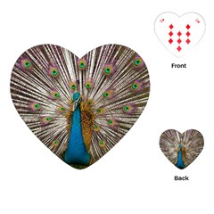 Indian Peacock Plumage Playing Cards (heart)  by Simbadda