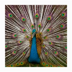 Indian Peacock Plumage Medium Glasses Cloth (2 Side) by Simbadda