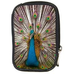 Indian Peacock Plumage Compact Camera Cases by Simbadda