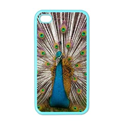 Indian Peacock Plumage Apple Iphone 4 Case (color) by Simbadda
