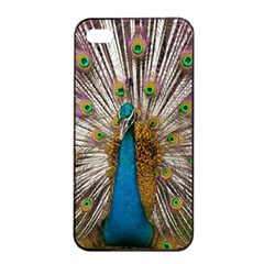 Indian Peacock Plumage Apple Iphone 4/4s Seamless Case (black) by Simbadda