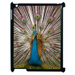 Indian Peacock Plumage Apple Ipad 2 Case (black) by Simbadda