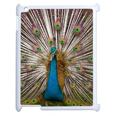 Indian Peacock Plumage Apple Ipad 2 Case (white) by Simbadda