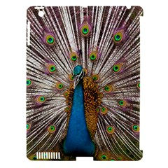 Indian Peacock Plumage Apple Ipad 3/4 Hardshell Case (compatible With Smart Cover) by Simbadda