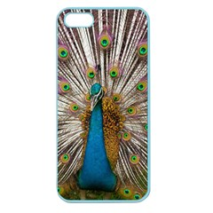 Indian Peacock Plumage Apple Seamless Iphone 5 Case (color) by Simbadda