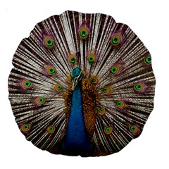 Indian Peacock Plumage Large 18  Premium Round Cushions by Simbadda