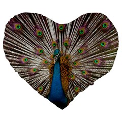 Indian Peacock Plumage Large 19  Premium Heart Shape Cushions by Simbadda