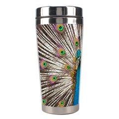 Indian Peacock Plumage Stainless Steel Travel Tumblers by Simbadda