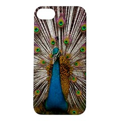 Indian Peacock Plumage Apple iPhone 5S/ SE Hardshell Case