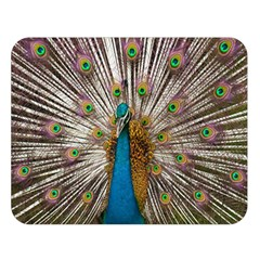 Indian Peacock Plumage Double Sided Flano Blanket (large)
