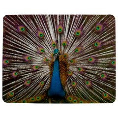 Indian Peacock Plumage Jigsaw Puzzle Photo Stand (rectangular) by Simbadda