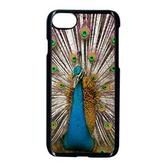 Indian Peacock Plumage Apple Iphone 7 Seamless Case (black) by Simbadda