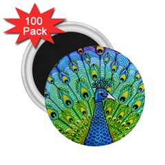 Peacock Bird Animation 2 25  Magnets (100 Pack)  by Simbadda