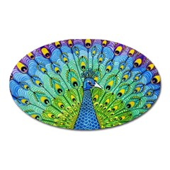 Peacock Bird Animation Oval Magnet by Simbadda