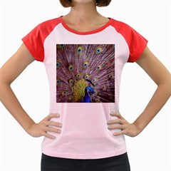 Peacock Bird Feathers Women s Cap Sleeve T Shirt by Simbadda