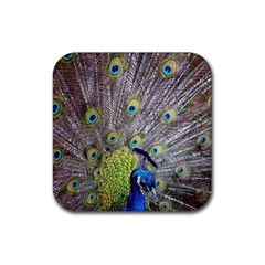 Peacock Bird Feathers Rubber Square Coaster (4 Pack)  by Simbadda