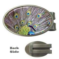 Peacock Bird Feathers Money Clips (oval)  by Simbadda
