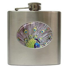 Peacock Bird Feathers Hip Flask (6 Oz) by Simbadda