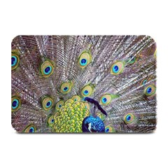 Peacock Bird Feathers Plate Mats by Simbadda