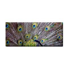 Peacock Bird Feathers Cosmetic Storage Cases by Simbadda