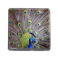 Peacock Bird Feathers Memory Card Reader (square) by Simbadda