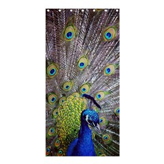 Peacock Bird Feathers Shower Curtain 36  X 72  (stall)  by Simbadda