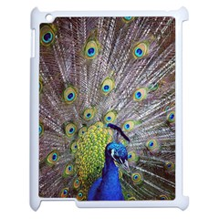 Peacock Bird Feathers Apple Ipad 2 Case (white) by Simbadda