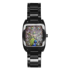 Peacock Bird Feathers Stainless Steel Barrel Watch by Simbadda