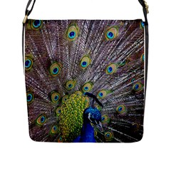 Peacock Bird Feathers Flap Messenger Bag (l)  by Simbadda