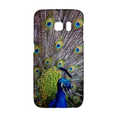 Peacock Bird Feathers Galaxy S6 Edge by Simbadda