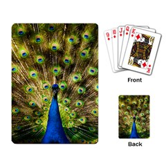 Peacock Bird Playing Card by Simbadda