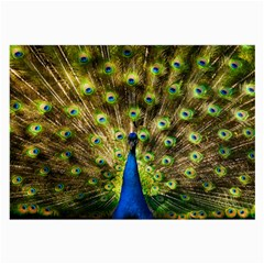 Peacock Bird Large Glasses Cloth by Simbadda